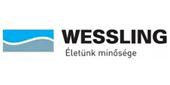 wessling_logo_small